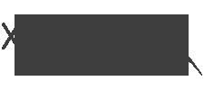 logo XSnsible